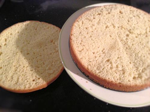 Sponge Cake 3